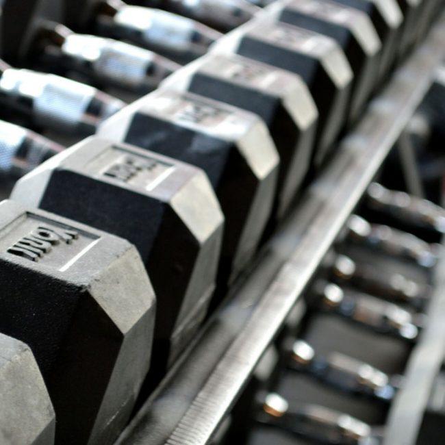 Bild Hanteln für Muskelaufbau